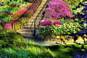 escalera-en-el-jardín_1191434320
